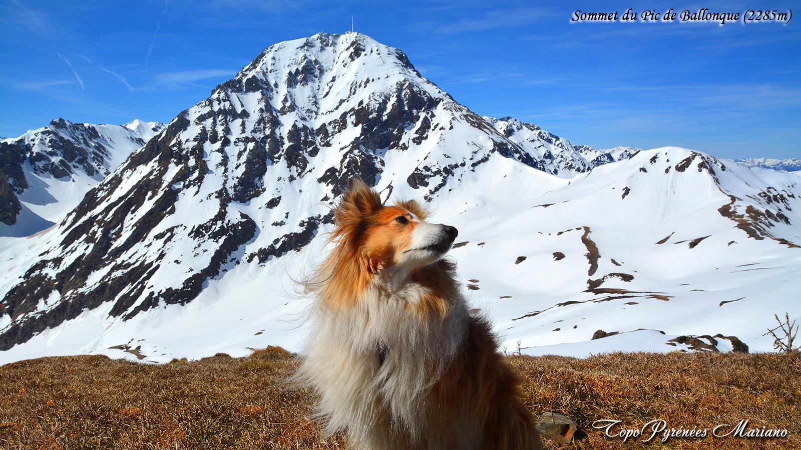 Raquettes et Ski Rando au Pic de Ballonque (2285m)