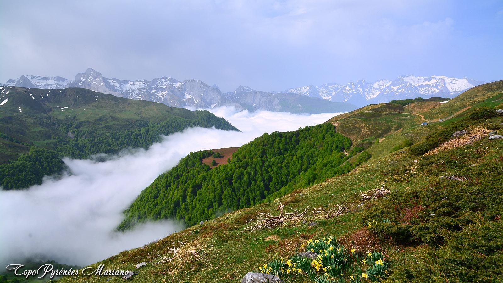 Randonnée Col de Louvie (1438m) en boucle