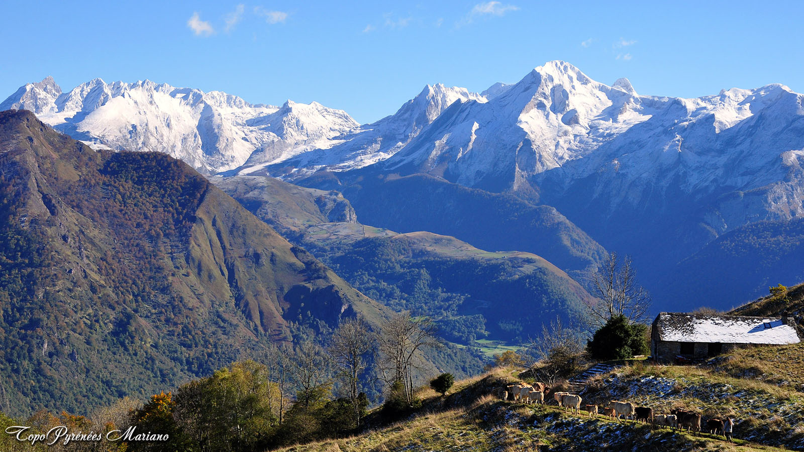 Article-Vallee-d-Ossau-hiver_012