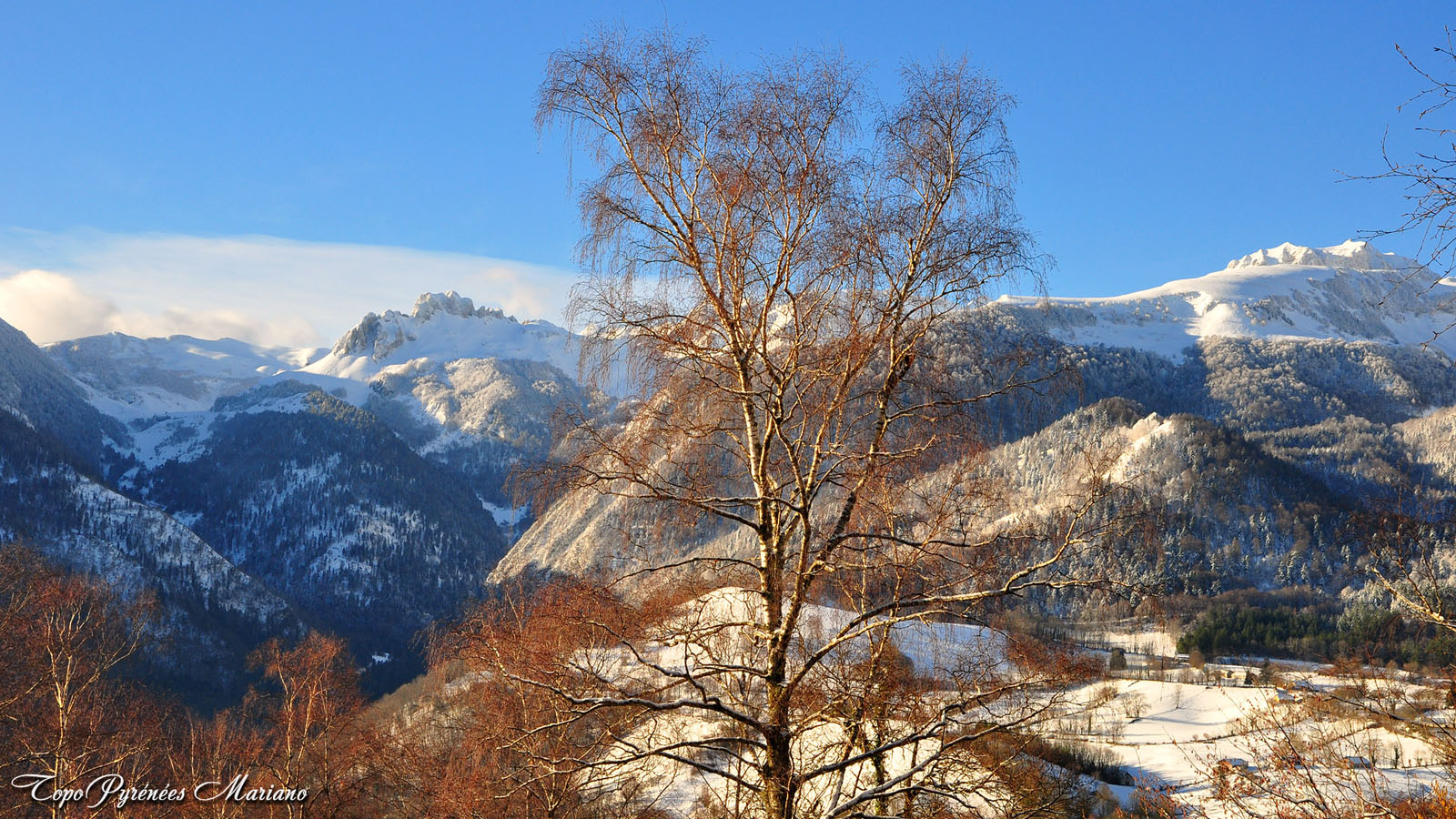 Article-Vallee-d-Ossau-hiver_020