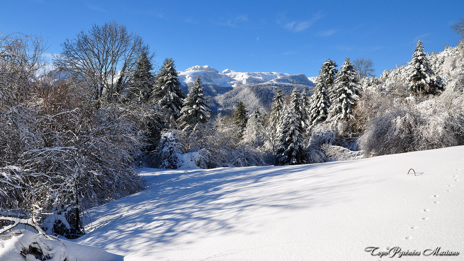 Article-Vallee-d-Ossau-hiver_024