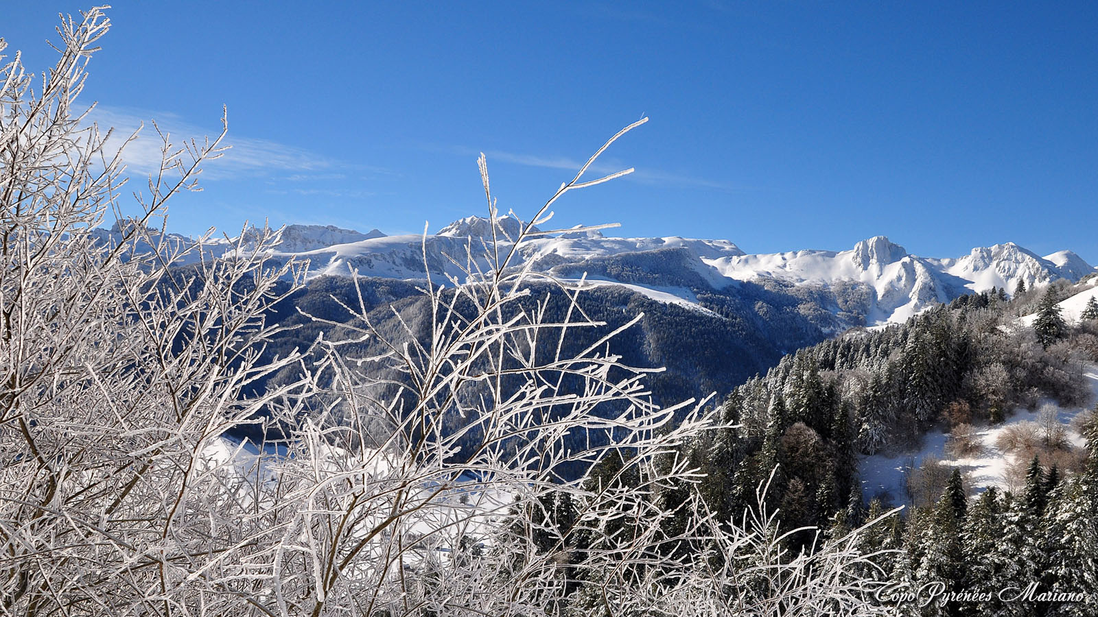 Article-Vallee-d-Ossau-hiver_030