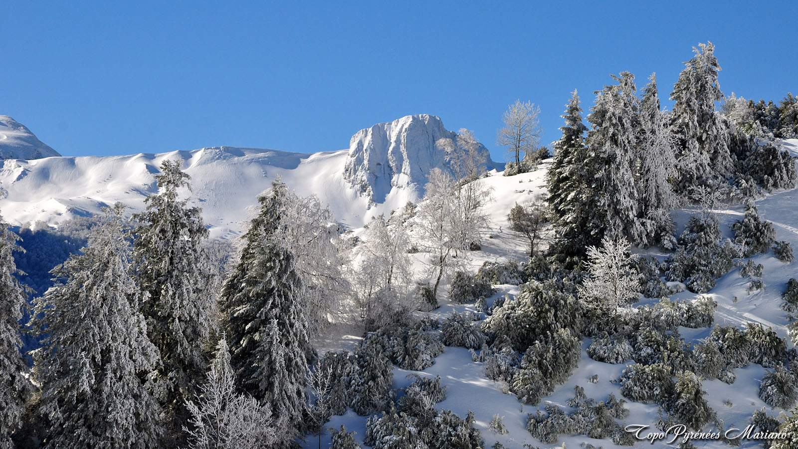 Article-Vallee-d-Ossau-hiver_031