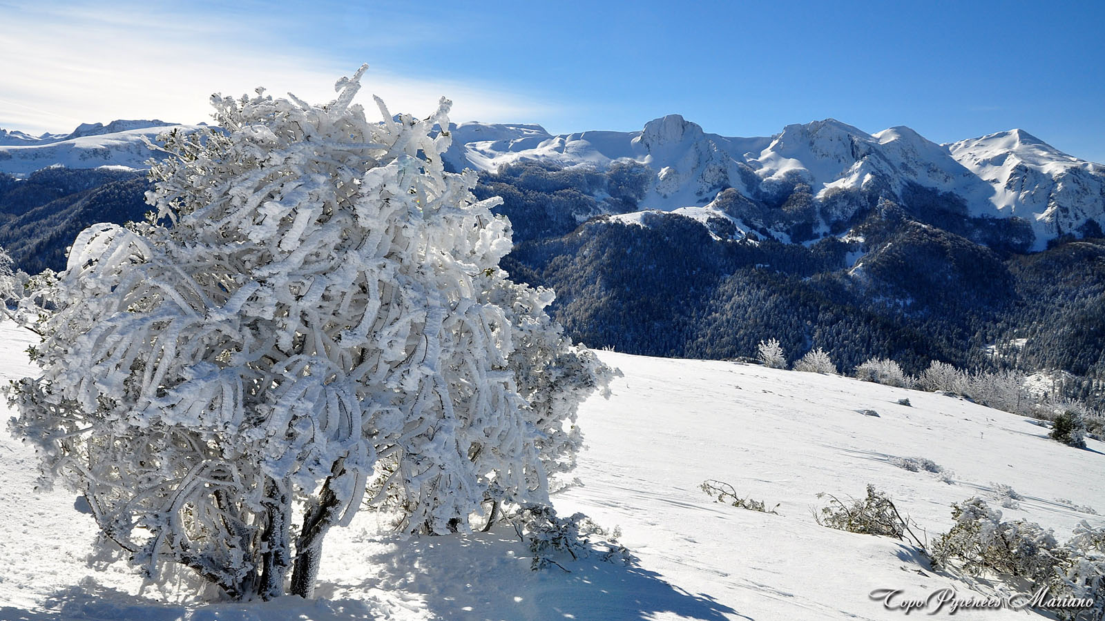 Article-Vallee-d-Ossau-hiver_039