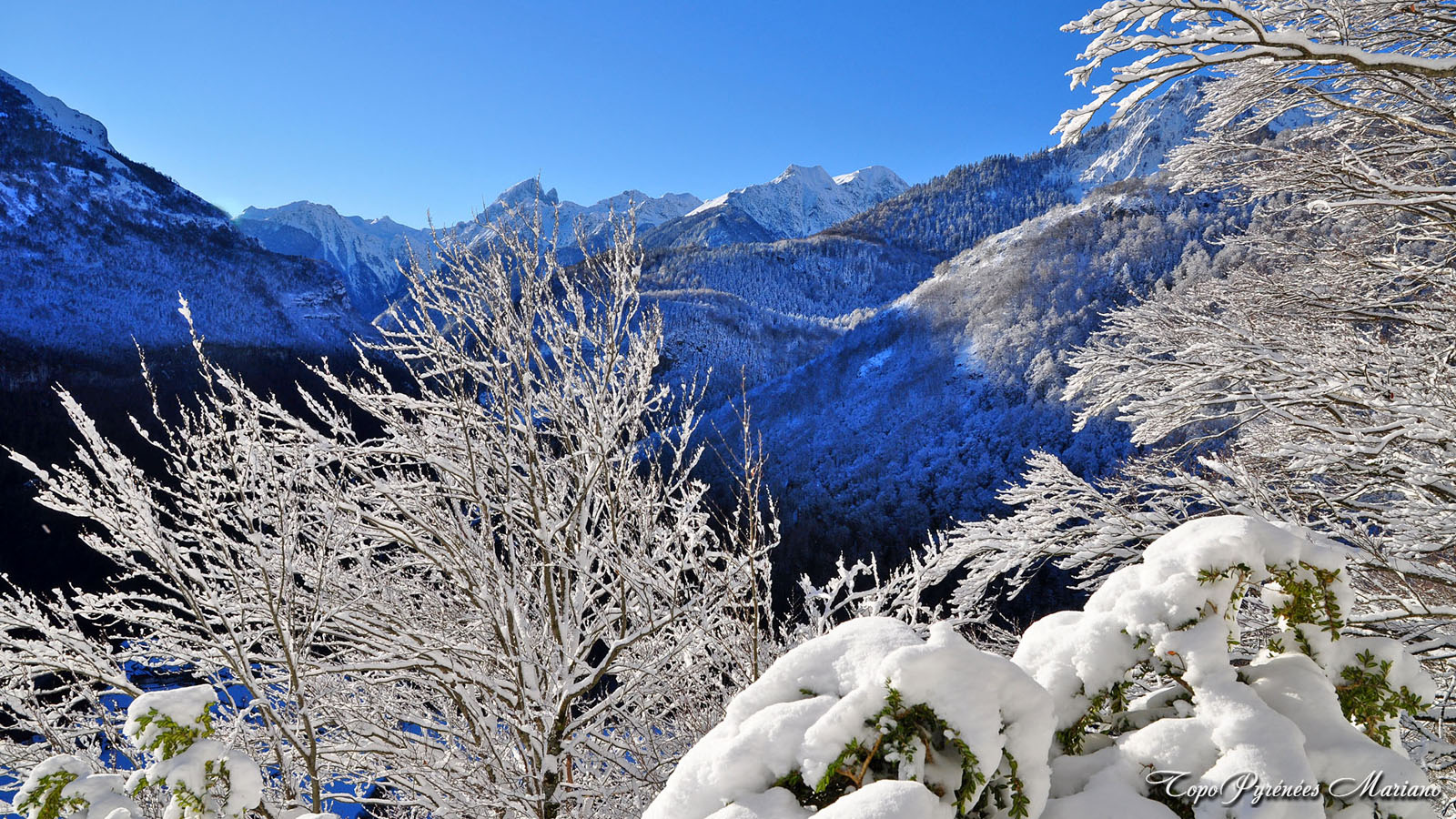 Article-Vallee-d-Ossau-hiver_051
