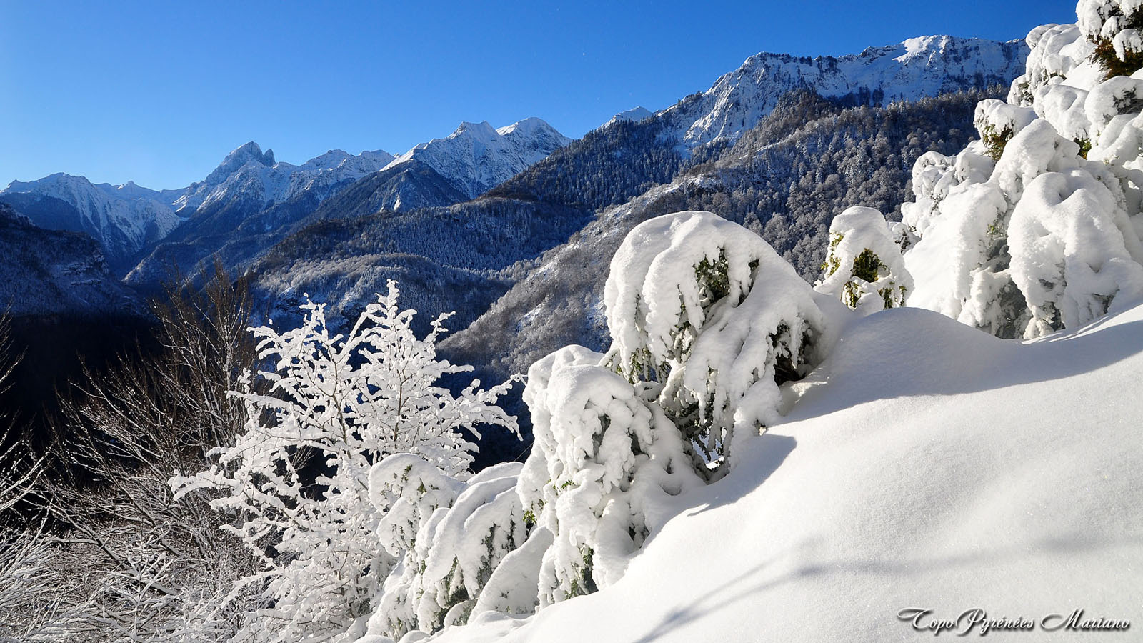 Article-Vallee-d-Ossau-hiver_054