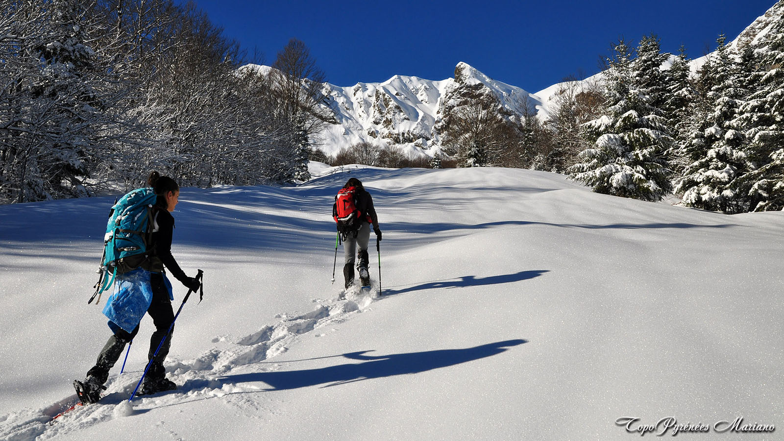 Article-Vallee-d-Ossau-hiver_061
