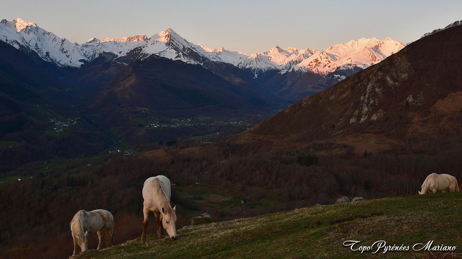 Bivouac-Mont-de-Gez_044