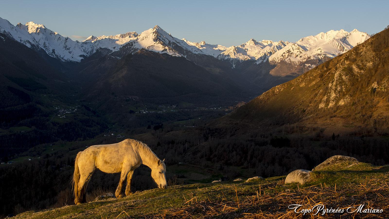 Bivouac-Mont-de-Gez_050