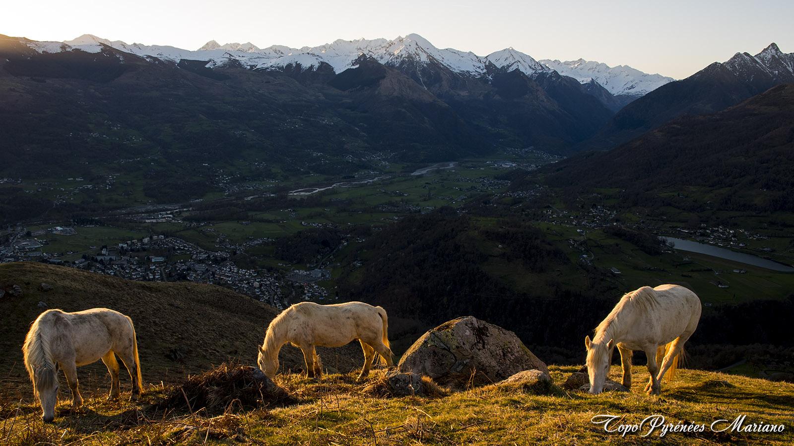 Bivouac-Mont-de-Gez_051