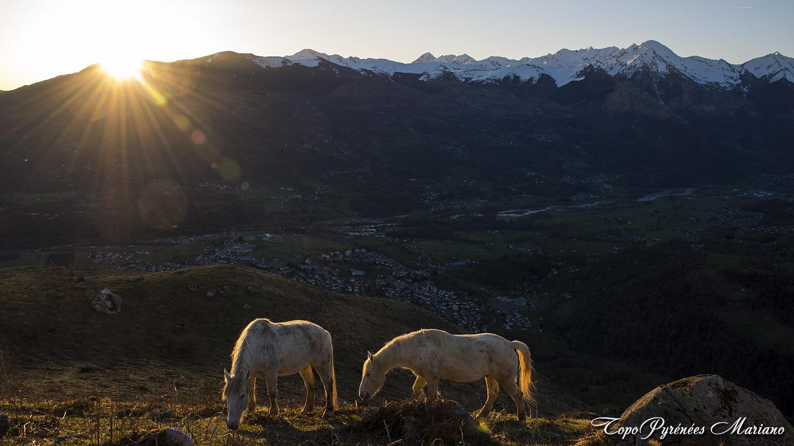 Bivouac-Mont-de-Gez_052