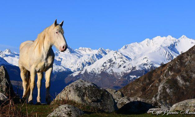 Bivouac au Mont de Gez (1097m)