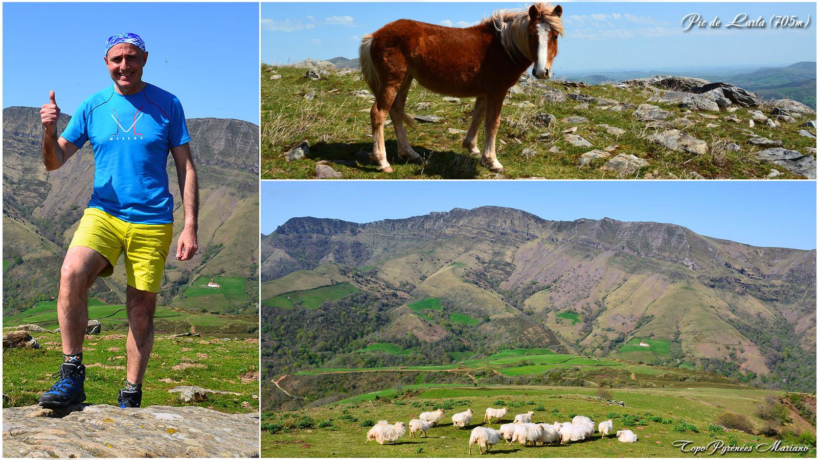 Randonnée Pic de Larla (705m) en boucle