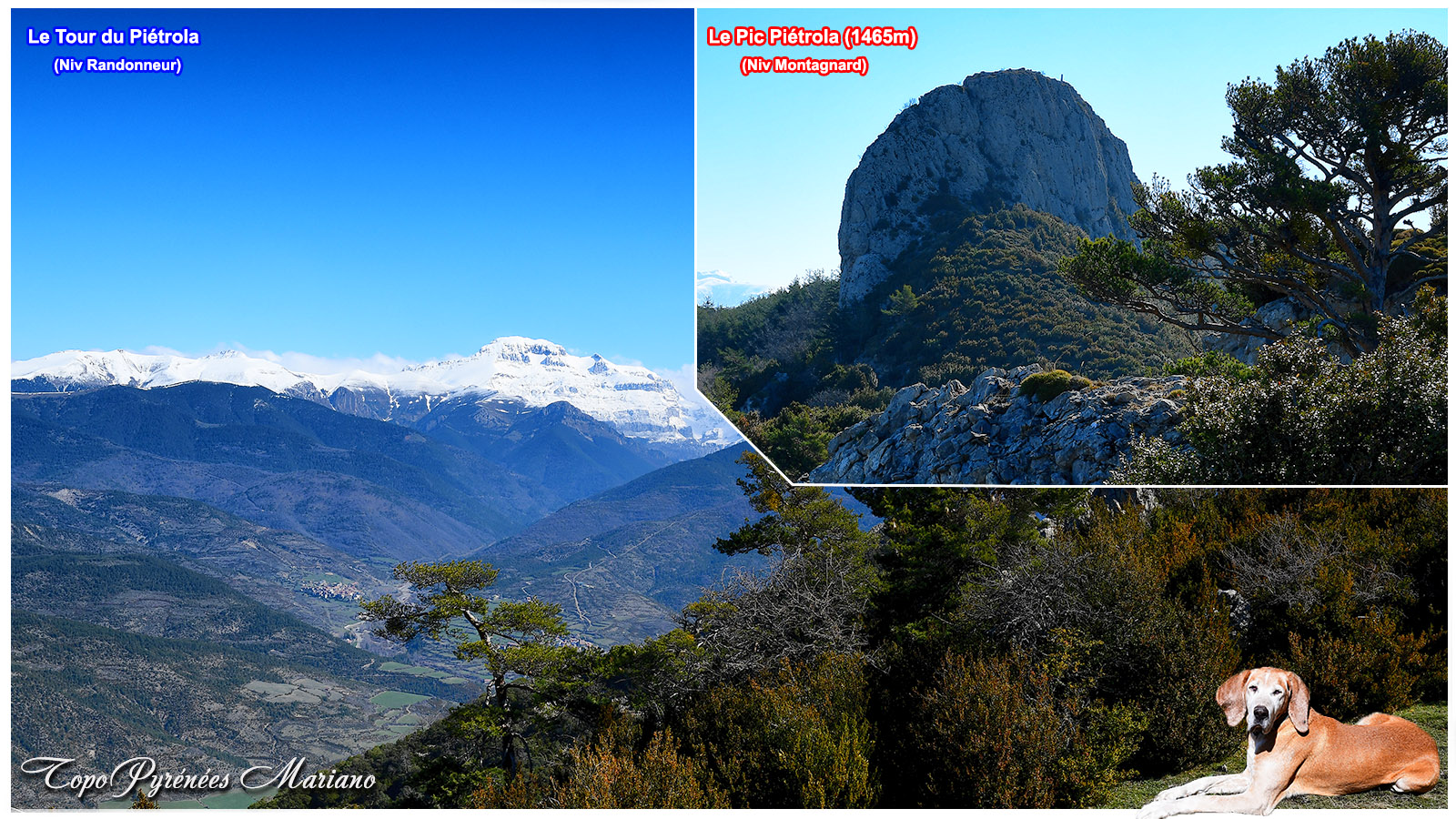 Randonnée Tour du Piétrola et son ascension (1465m)