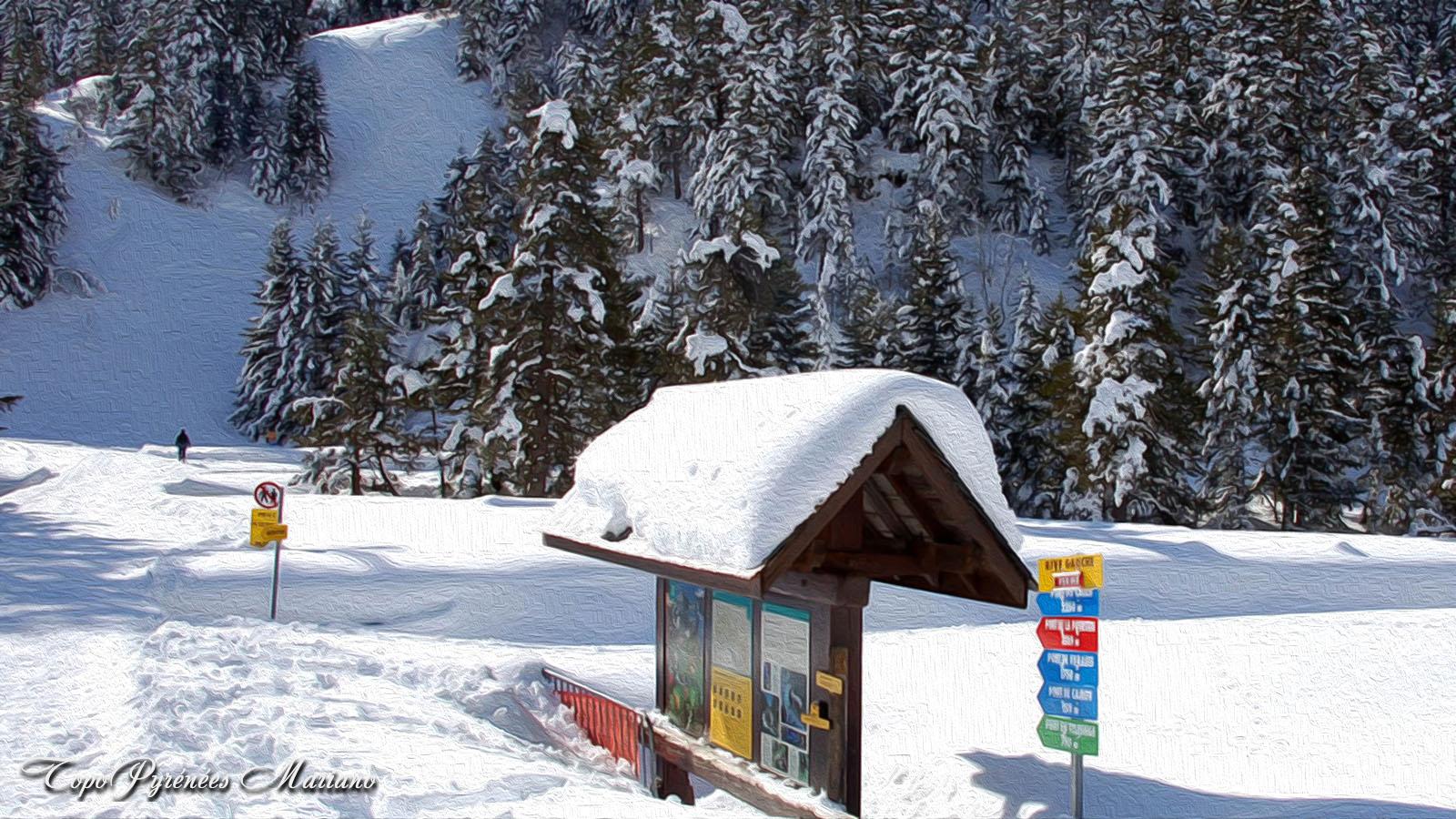 Dans les Hautes-Pyrénées