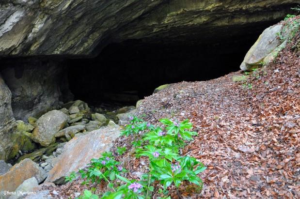randonnee-grotte-par-le-sentier-des-fenetres_093