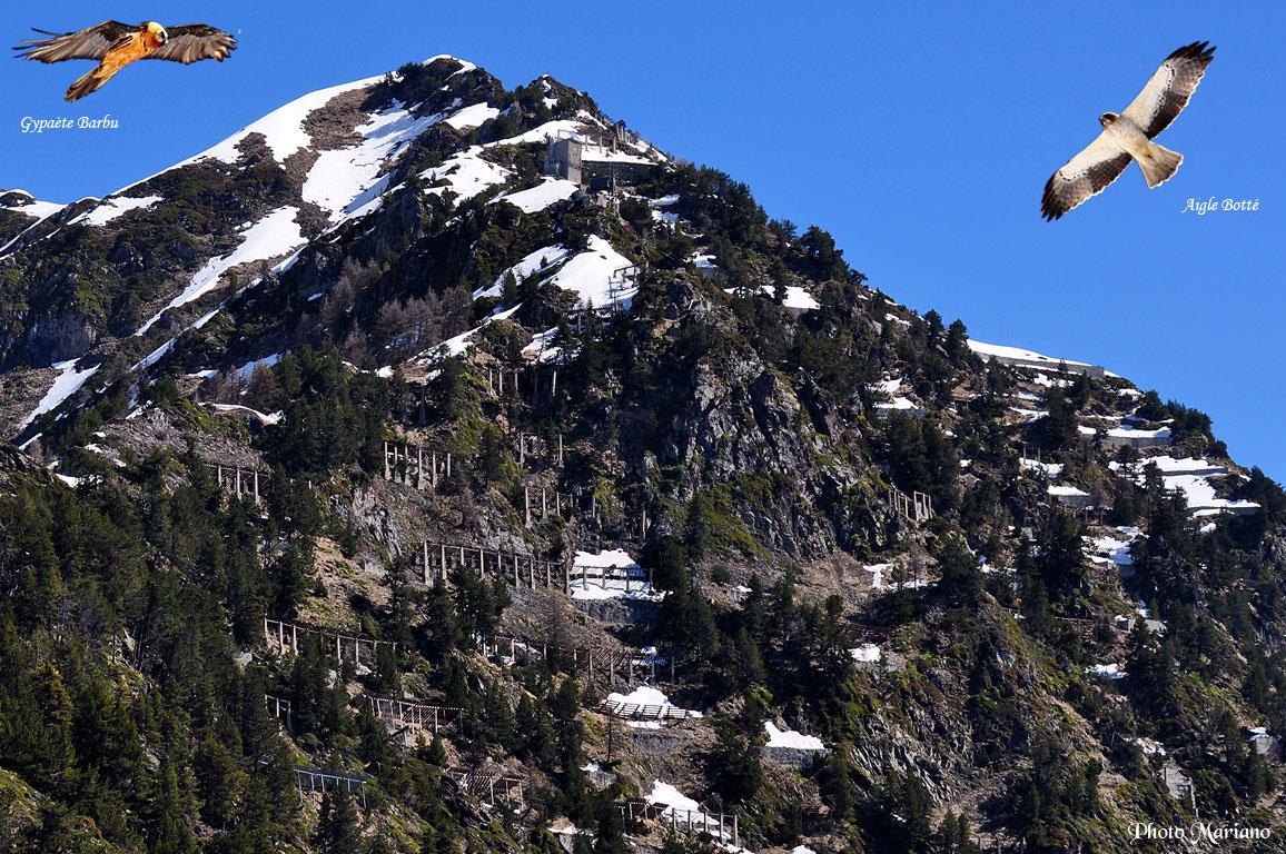 Randonnée la Montagne Fleurie (Crête d'Eres Tiarrères) 1988m