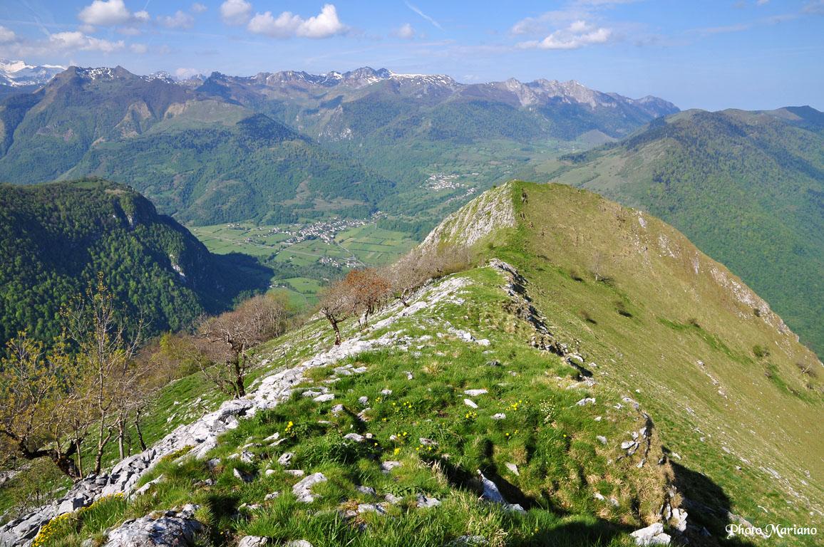 Randonnée Montagne du Rey 1349m par le versant Sud