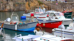 Photo-Ville-de-Biarritz_027