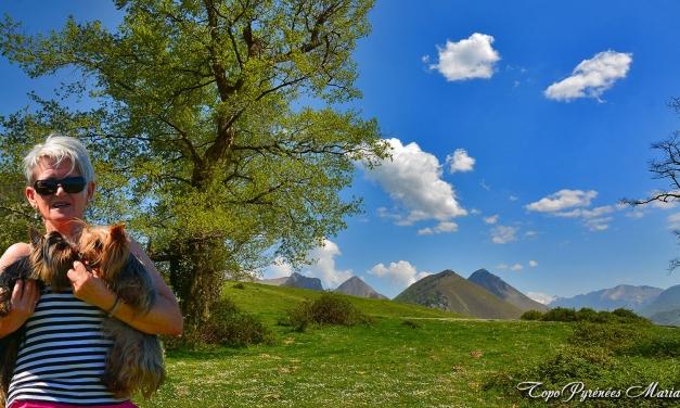Randonnée Soum de Berret (948m)