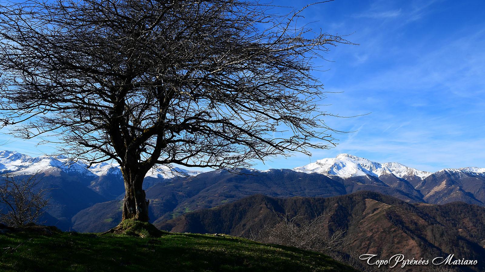 Randonnée Pic Salhagagne 1053m